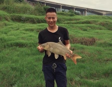 最近渔获手竿搏大鲤 自制饵料钓黄颡鱼
