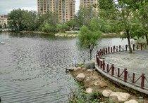 香蜜湖钓场