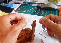 《鱼饵配制视频》 钓友详细解析如何绑红虫